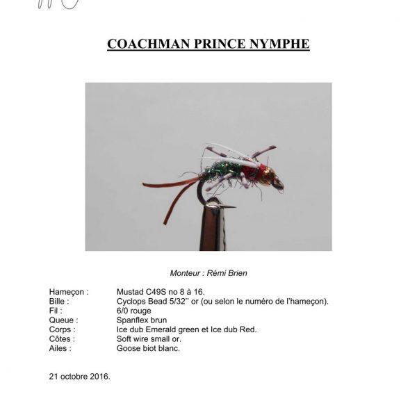 Coachman-prince-nymphe