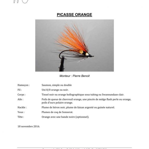 Picasse-Orange